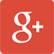 social-sidebar-googleplus