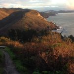 A Mystery in Muir Beach