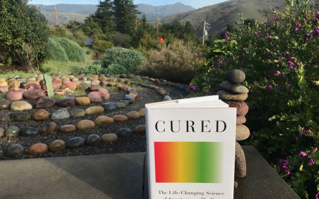 Harvard Doctor Untangles The Mysteries of Spontaneous Healing